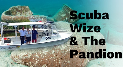 Scuba Wize and the Pandion Black Text Over image of Sunken Artifacts with Boat on Left Side that reads Pandion and C-16