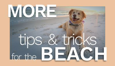 Tips and Tricks for the Beach