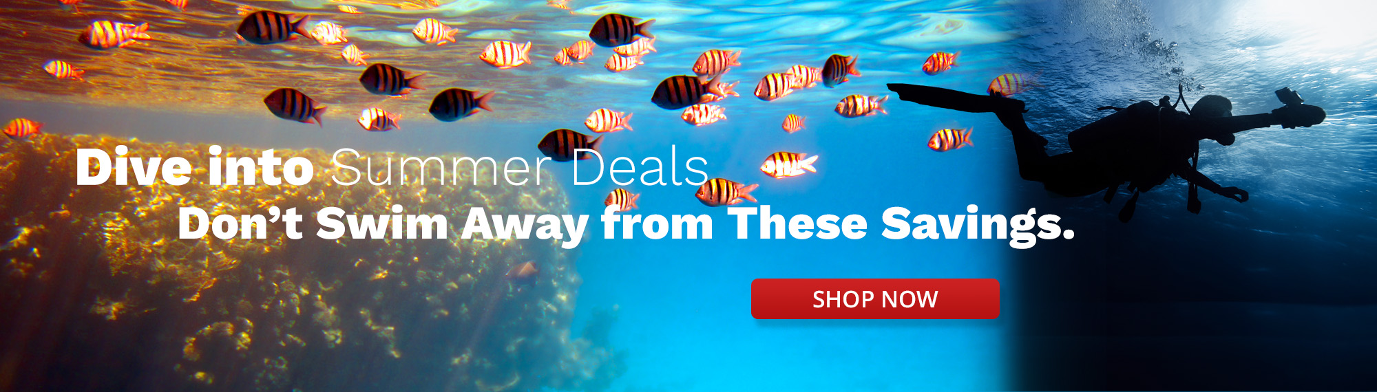 Dive into Summer Deals Don't Swim Away from These Savings in White Text Over Blue Water Image of Yellow Fish and Diver Swimming Towards the Left