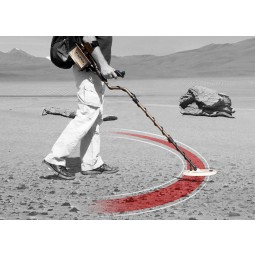 Black and white image of a man sweeping Nokta Makro FORS Gold+ Metal Detector with sweep radius colored red
