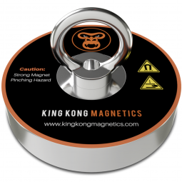 One of two King Kong magnets included in the kit
