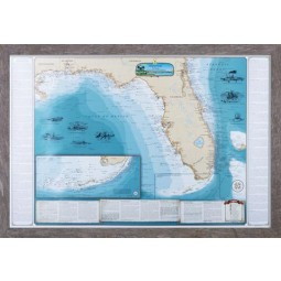 Sealake Maps Laminated Shipwreck Map of Florida and the Eastern Gulf of Mexico - 2