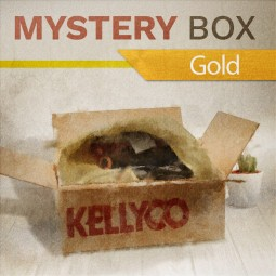 Gold Mystery Box from Kellyco Metal Detectors