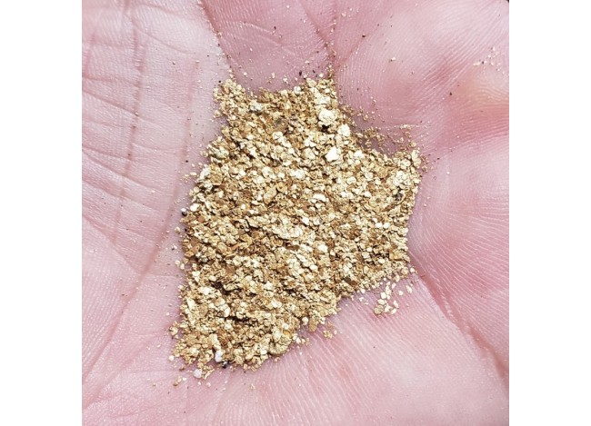 Fine snake river gold in a man's hand