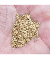 GoldBay Paydirt with 1 Gram of Rare Snake River Gold