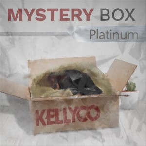 Image of Platinum Mystery Box from Kellyco Metal Detectors