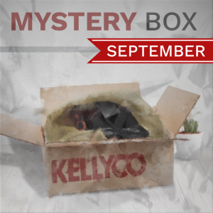 Mystery Box from Kellyco Metal Detectors