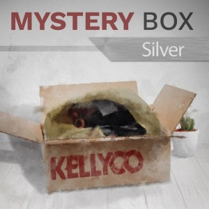 Silver Mystery Box from Kellyco Metal Detectors