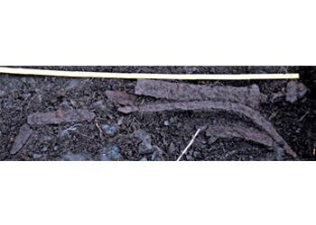 early-viking-age-grave-2