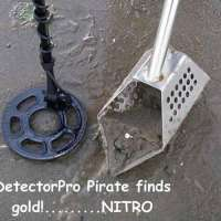 detectorpro-finds-coins-and-gold-rings-4