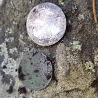 Reverse Tails Side of Two Coins, Farthing and Shilling on Lichen Rock Background