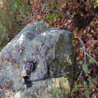 Nokta Makro Simplex Plus Metal Detector in Leafy Area with Coil Half Covered with Fallen Leaves, Garret Finds Box sitting on Boulder and Shovel Sticking out of the Dirt Beside the Boulder with Forest Background
