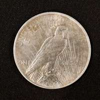 Reverse of Peace Dollar with Peace Visible Along Lower Edge