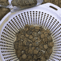 Piles of Pennies in a Dirty Colander with Stack of Coins Resting in Trowel Above Colander